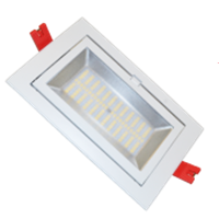 Image de Downlight LED SMD Orientable  60W - Blanco Frío